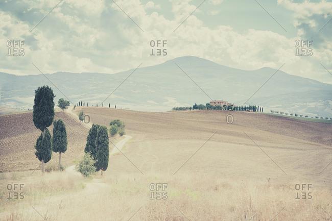 Rolling landscape at Siena