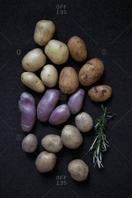 Various types of potatoes