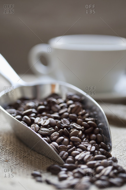 Close up of a scoop of coffee beans