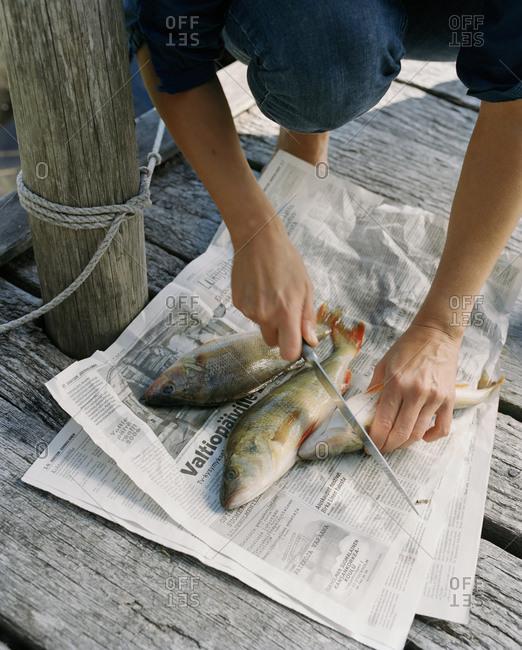 Man preparing fish on a newspaper