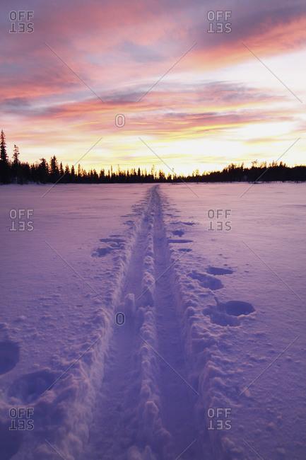 Skiing tracks at dusk, Vittangi, Lapland, Sweden