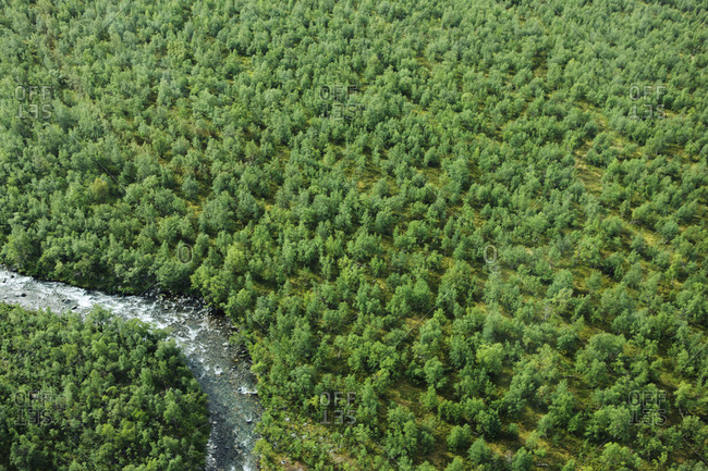 Aerial vie of river and forest, Kebnekaise, Lapland, Sweden