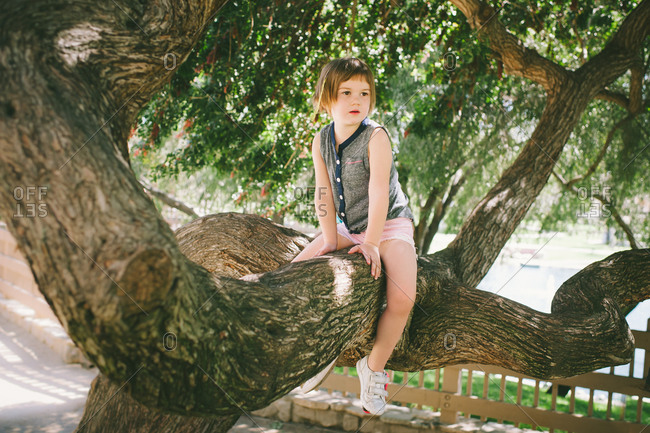 Girl sitting on a tree branch