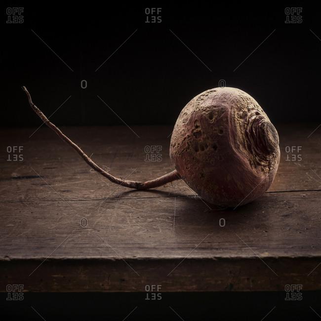 Studio shot of common beet