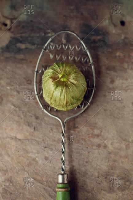 Single tomatillo on a spoon