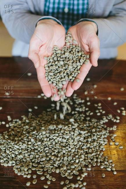 Person holding raw coffee beans