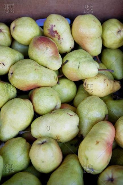 Pears on display at a market