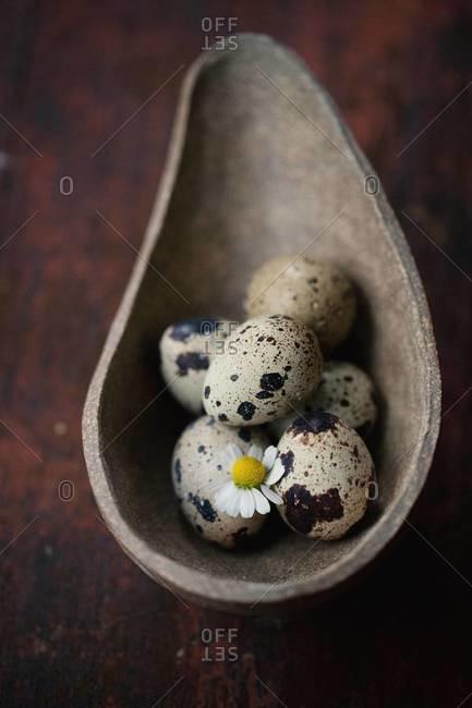 Quail eggs in a stone bowl