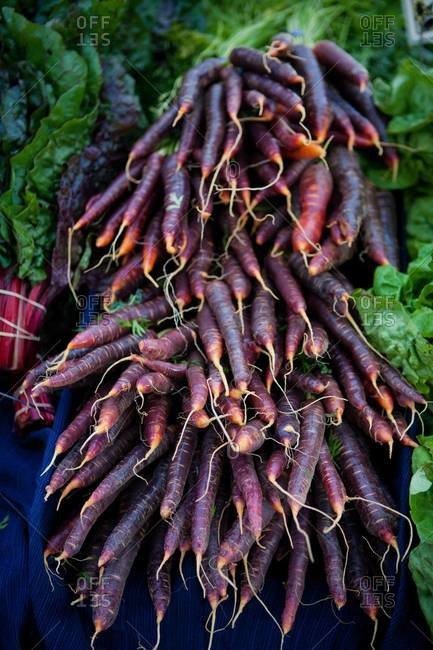 Close up of a bunch of carrots