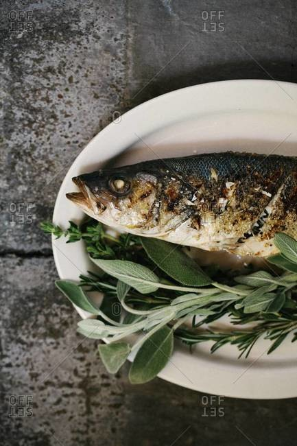 Grilled bronzino fish with sage, rosemary and thyme