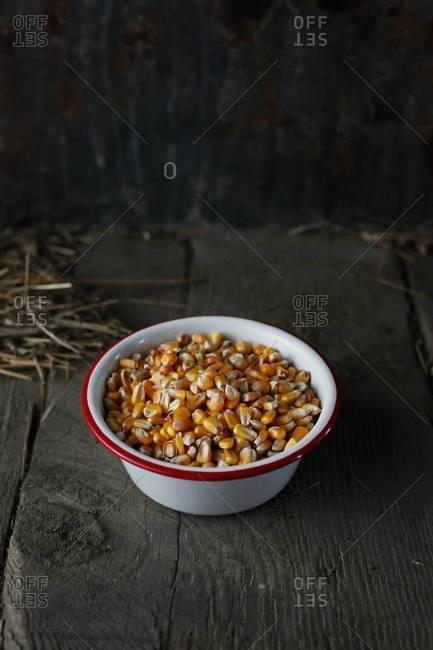 Close up corn kernels