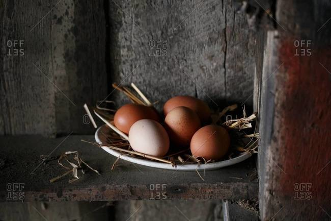 Plate of free range eggs