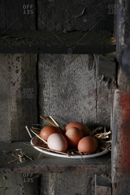 Plate of free range eggs