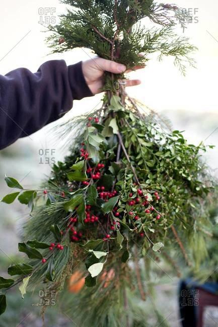 Man holding Christmas mistletoe