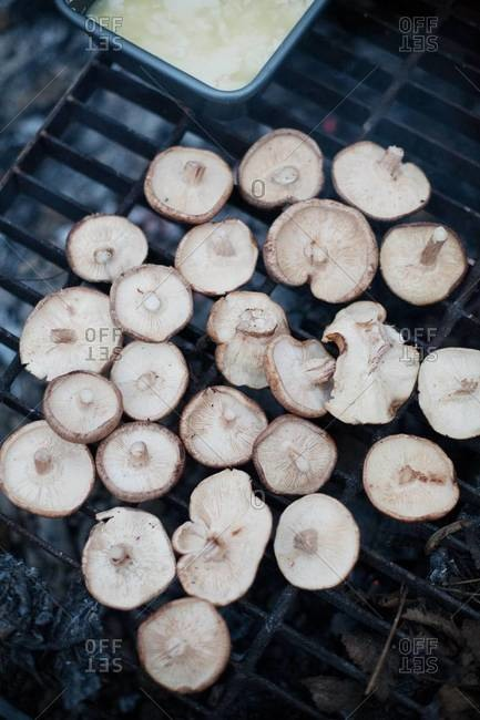Grilling mushrooms on barbecue party