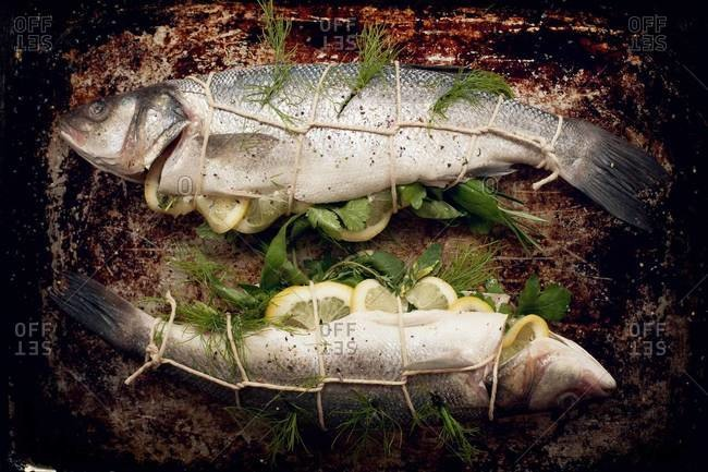 Whole bronzini stuffed with lemon and herbs