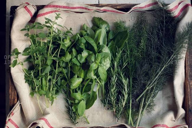 Fresh herbs displayed on kitchen towel