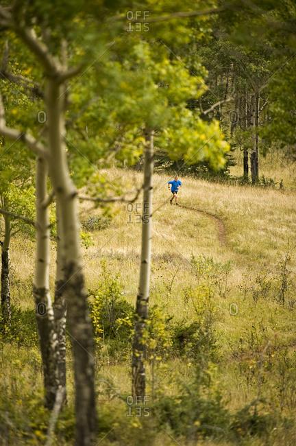 Man runs through a lush meadow