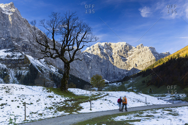 Couple walking on path, bare Sycamore maple tree, Karwendel Mountains, Grosser Ahornboden, Alpine Park Karwendel, Tyrol, Austria