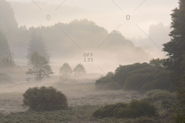 Valley in morning mist, Spessart, Bavaria, Germany, Europe