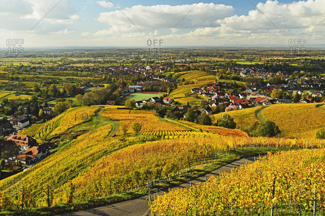 Vineyard Landscape and Steinbach Village, Ortenau, Baden Wine Route, Baden-Wurttemberg, Germany