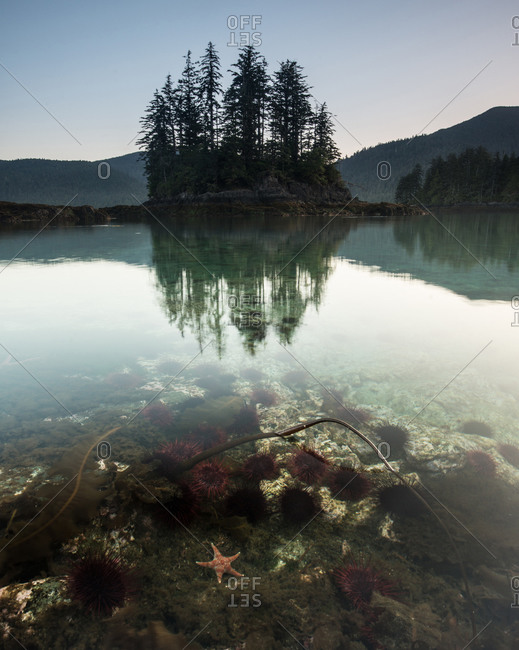 Crystal clear water of a lake at Queen Charlotte Island, Canada