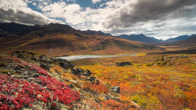 Scenic landscape in Tombstone Territorial Park, Yukon Territory, Canada