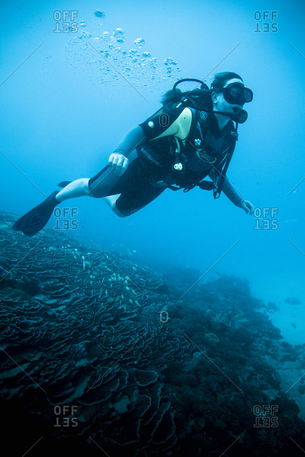 Scuba diver explores the reef in Zanzibar, Tanzania