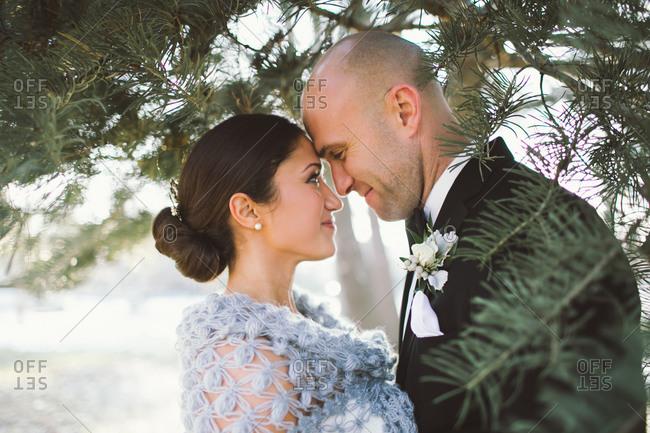 Bridge and groom posing under a pine tree