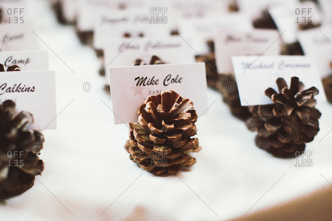 Place cards fixed on pine cones
