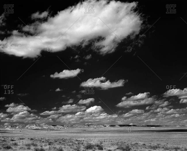 Black and white landscape with fluffy clouds