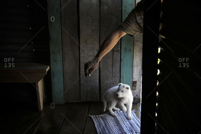 Man training puppy in shed