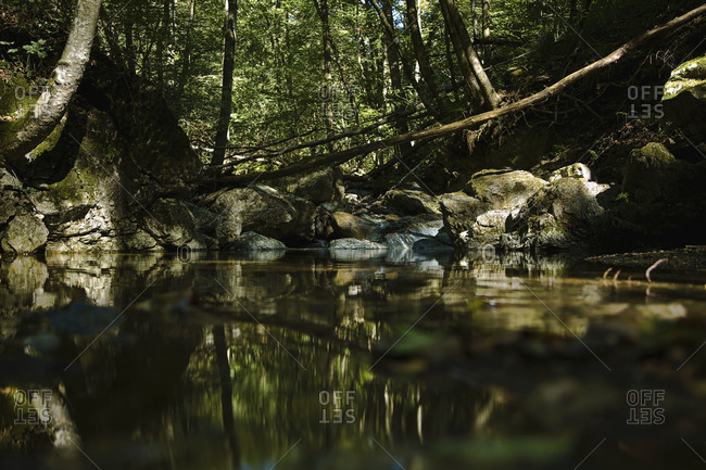 Rivulet Franscinone near Sonvico, Canton Ticino, Switzerland