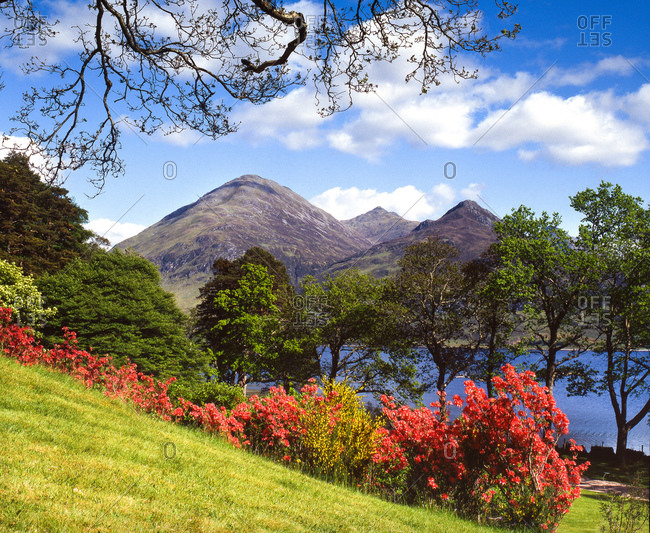 Spring time at Loch Duich, NW Highlands