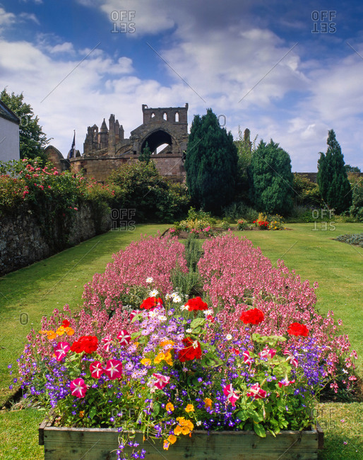 Flower bed, Melrose Abbey, Roxburghshire, Scotland