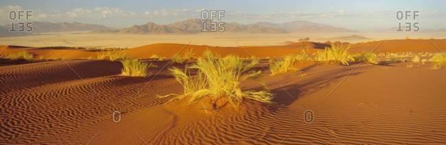 Sand dunes and mountains, Namib Rand Game Reserve, Namib Naukluft Park, Namibia