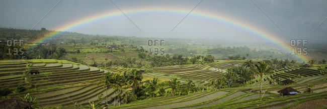 A rainbow over the terraced rice fields in Jatiluwih, Bali, Indonesia