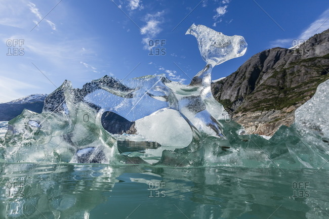 Glacial ice calved from the Sawyer Glacier, Williams Cove, Tracy Arm-Ford's Terror Wilderness Area, Southeast Alaska, United States of America, North America