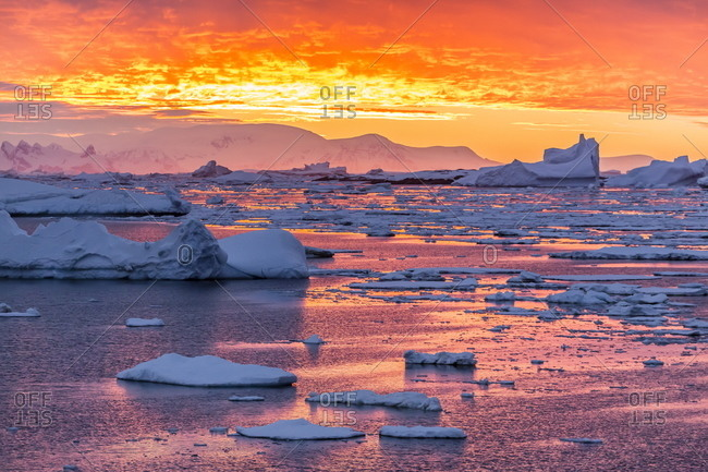 Sunset over ice floes and icebergs, near Pleneau Island, Antarctica, Southern Ocean, Polar Regions