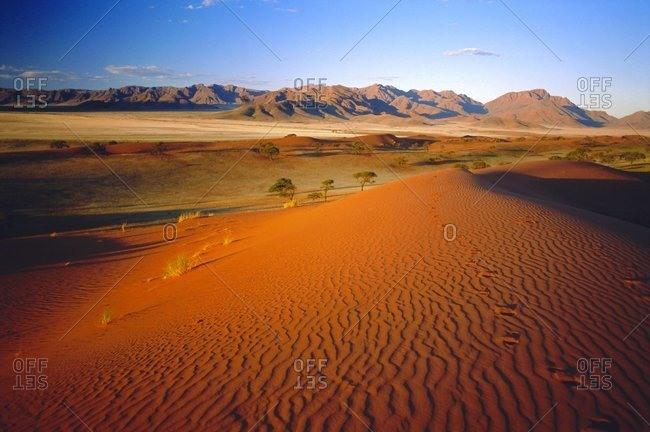 Sand Dunes, Namib Rand, Namibia