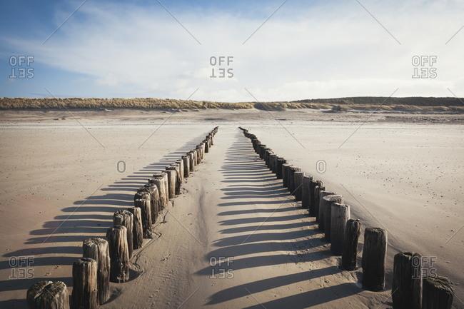 Wooden groynes on a sandy beach, leading to sand dunes, Domburg, Zeeland, The Netherlands