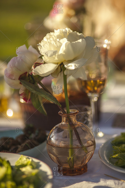 Peonies in a vase on a dinner table