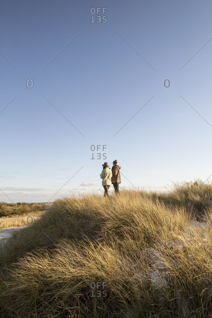 Couple standing on a dune together