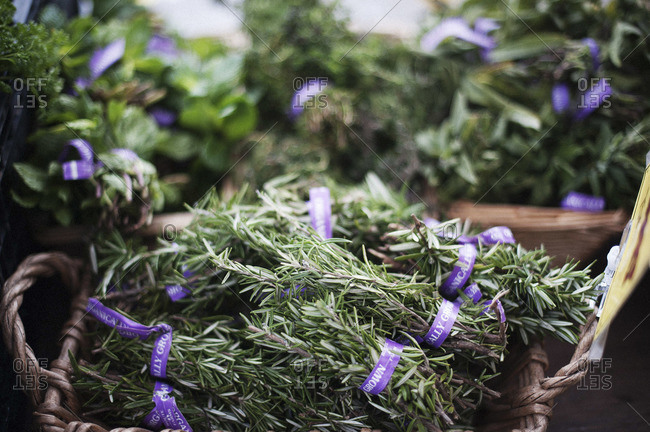 Bunches of rosemary for sale at a market