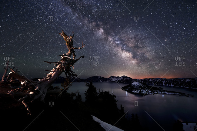 Bristlecone and Milky Way over Crater Lake