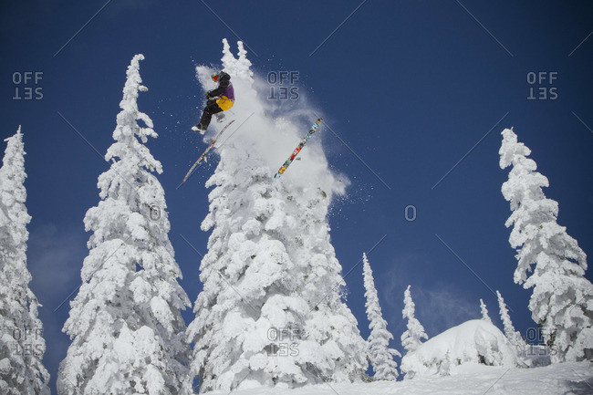 A skier crashes into a tree while in mid air on a bluebird day.