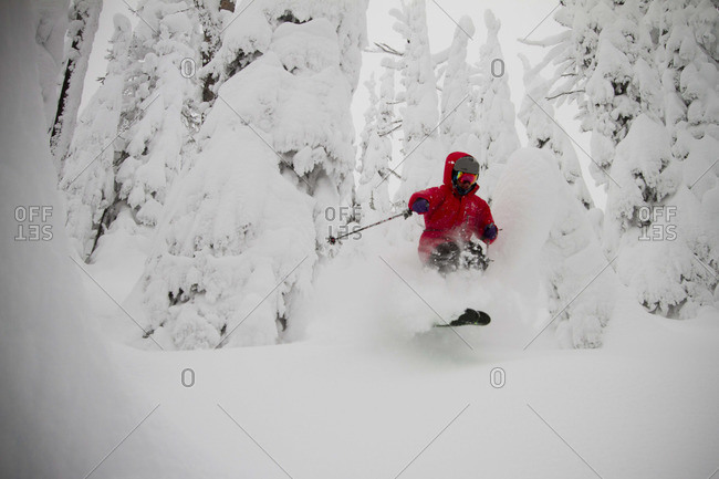 A skier bursts through some powder snow amidst the trees.
