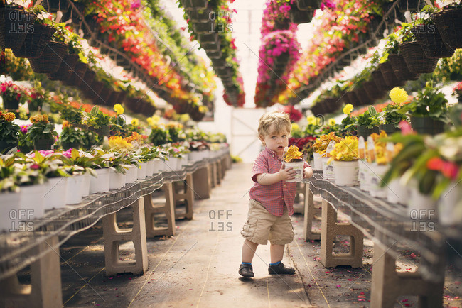 Toddler holding a flower pot at a greenhouse