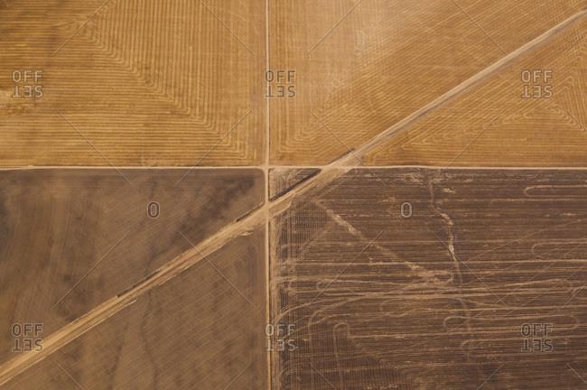 Aerial view of wheat farm, Colorado