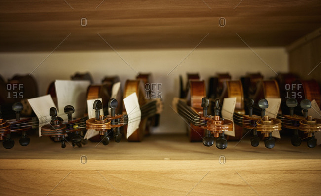 Violins to be repaired in a violin maker's workshop